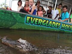 miami-to-the-max-everglades-4736d1e@1300