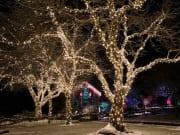 Canada_Victoria_Butchart Gardens_Christmas tour