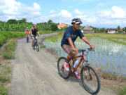 Countryside cycling (3)