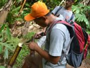1 Jungle Trekking (12)
