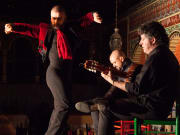 Flamenco, Performers