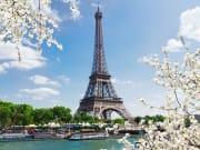 Paris tour with Seine cruise & Eiffel Tower lunch