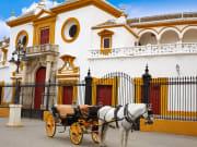 Seville Maestranza