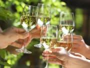 Wine, wine toast, Fontainebleau hot air balloon