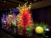 USA_Orlando_chihuly-glass-display-terry-rishel