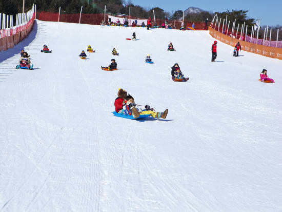 snow sled in gangchon