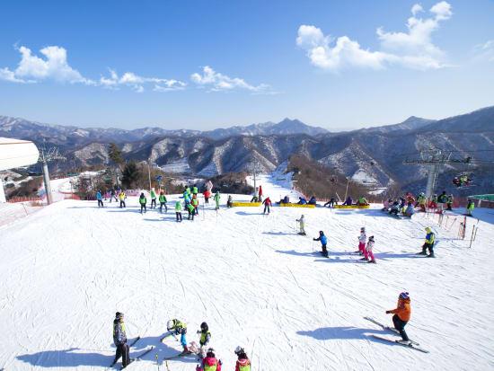 Elysian Ski Resort