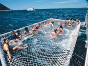 tourists enjoying boom netting in australia