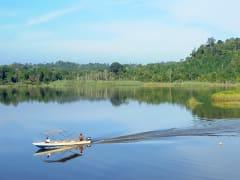 Malaysia_Lake_Chini_shutterstock_139688785