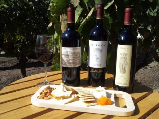 Semi-Private Premium Wine Tour at Santa Rita Winery 1