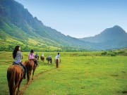 USA_Hawaii_Kualoa_Horseback_blueSky