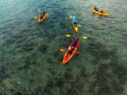 18f0e93a4b544b9bbbf048f972fda8f6Kayak_Turtle_Tours_with_Pacific_Watersports_lg