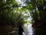 rainforest4_lg