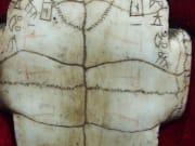 oracle bone found in yin xu ruins china