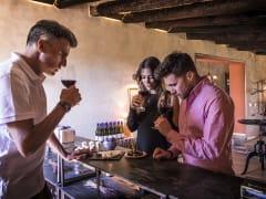 spain, barcelona, Penedès, cava, wine, tasting