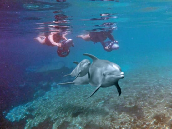 DQH Underwater Adventure.photo1