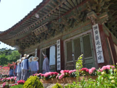 Jeondeungsa Overnight Temple Retreat