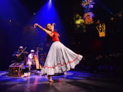 Cirque du Soleil JOYA - Musical Pre Show 2