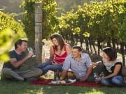 rsz_margaret_river_-_amrta_-_vineyard_credit-900x500