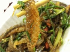 guangzhou fish skin