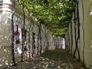 Jerez  de la Frontera- Calle Gonzalez Byass