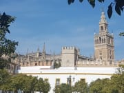 The Cathedral and Alcázar Seville (7)