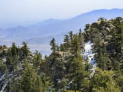 USA_California_Palm-Springs_Mount-San-Jacinto-State-Park_123rf_53750409_ML