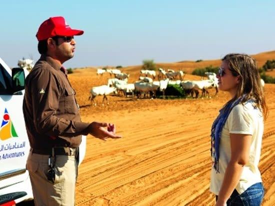 arabian-crop