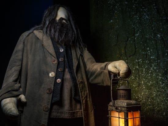 FF-Hagrid