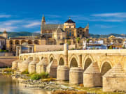 Cordoba Overnight Guided Tour from Seville (2)