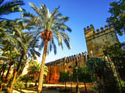 Jewish Quarter Walking tour and Alcazar de Cordoba Ticket