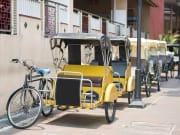 Singapore_Pedicab_Tricycle_shutterstock_338983340