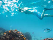 Snorkeling_Swimming_Under_Water_shutterstock_568329076