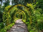 Singapore_Botanic_Garden_Flower_Archway_shutterstock_504477280