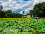 Indonesia_Jakarta_Bogor_garden_shutterstock_565681609