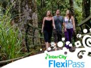 NZ_FlexiPass_bush-walk
