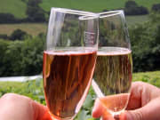 Glasses_of_Red_and_White_Sparkling_Wines_123RF_5482478_ML