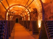 France_Reims-Cellar_shutterstock_475770976