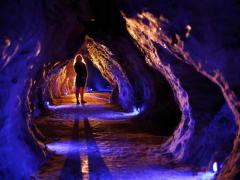 Waitomo Glowworm Caves and Ruakuri Cave Tour