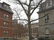 USA_Boston_Harvard Yard