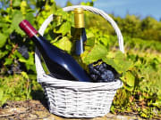 White_and_Red_Wine_in_a_Basket_Grapes_Vineyard_Winery_shutterstock_107139155