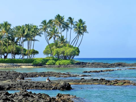 Big Island tours & activities, fun things to do in Big