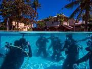 Cebu_diving4