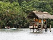 Mangrove Boat Tour in Bentota River