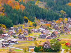 shirakawago autumn
