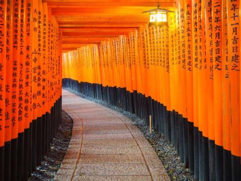 Osaka tours & activities, fun things to do in Osaka  | VELTRA