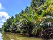 Sri Lanka_Bentota River_Boat Tour
