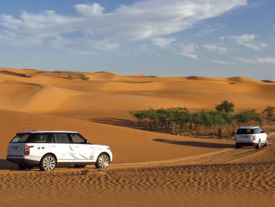 platinum-Heritage-Range-Rover-Wildlife-Drive