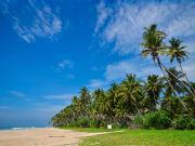Sri_Lanka_Kosgoda_Island_shutterstock_241089889