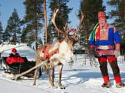 Reindeer sled